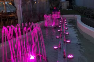 pink fountain on